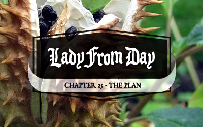 Lady From Day &#8211; Chapter 25 &#8220;The Plan&#8221;